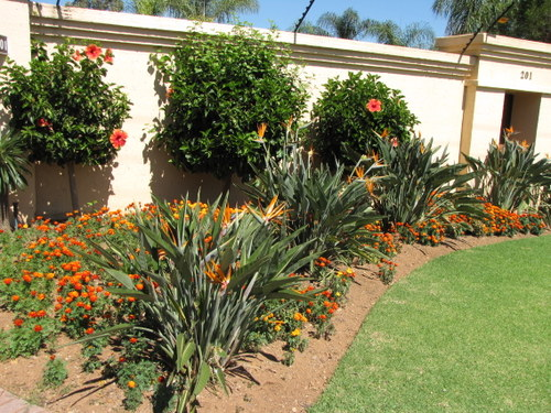 Do it yourself landscaping your guide to great landscaping ideas do it yourself landscaping a work in progress solutioingenieria Choice Image