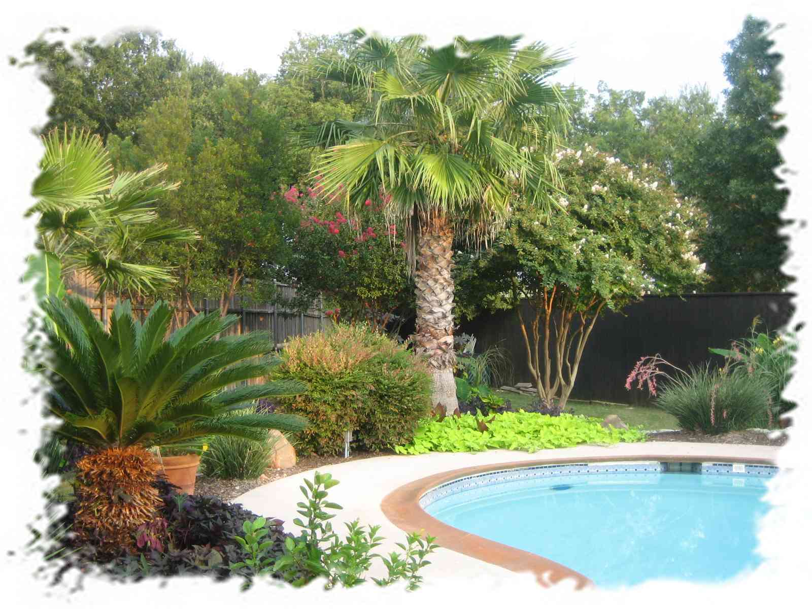 Pool landscaping ideas to add tremendous value to you home for Pool garden ideas